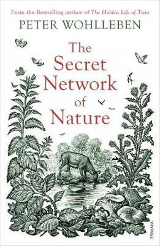 Secret Network of Nature: The Delicate Balance of All Living|Things