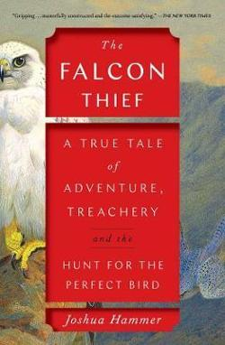 Falcon Thief