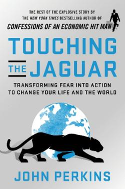Touching the Jaguar: Transforming Fear into Action to Change|Your Life and the World